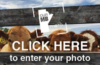 Our Manitoba Photo Contest Open